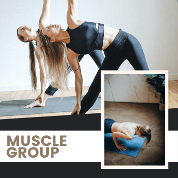 yoga muscle group