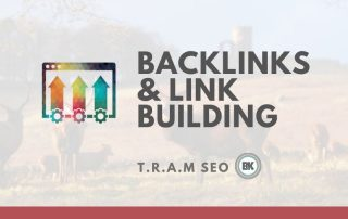 A Rookie Guide to Backlinks and Link Building